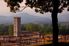 """Torre Guinigi View • <a style=""""font-size:0.8em;"""" href=""""http://www.flickr.com/photos/55747300@N00/6173097949/"""" target=""""_blank"""">View on Flickr</a>"""