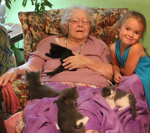 kitten time with Gramma