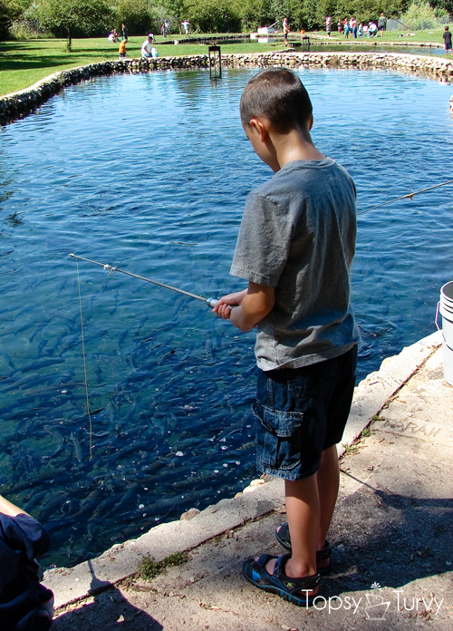 trout-farm-fishing