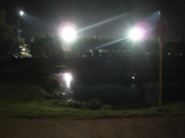 twilight pond