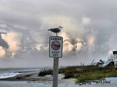 keep off (gailpiland) Tags: light sky grass sign clouds seagull excellent sundog awardtree gailpiland cottagesbeach