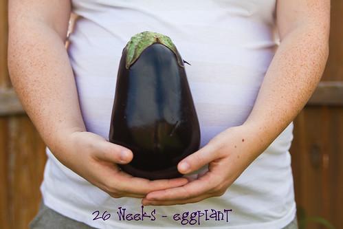 Eggplant-002 copy
