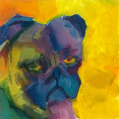 Get these crazy colors off my face. (dewartist) Tags: dog abstract art yorkie animal portraits colorful labrador bright hound pug canine prima alla fauve fauvism semiabstract abstractlandscape dailypainting dailypainter semiabstractlandscape semiabstractdog semiabstractanimal semiabstracthorse carolmarineworkshop carolmarine