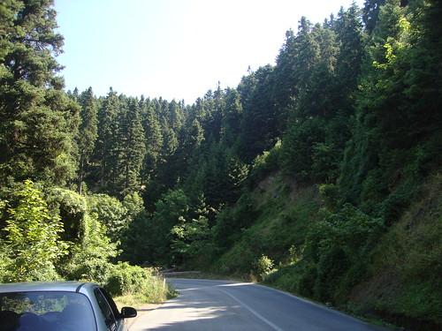 bendy roads