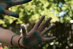 (tish.tosh) Tags: blue tree green outside hands hand pastel bleh