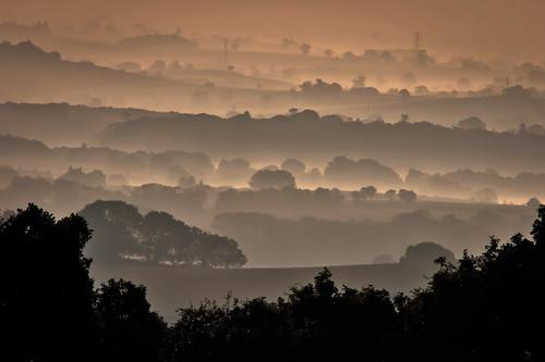 [免费图片] 自然・景观, 树, 小丘, 雾・薄雾, 英国, 201110010100