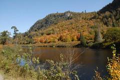 DSD_7759 (Greying_Geezer) Tags: autumn ontario canada fall colors colours scenic trains autumncolours railways railroads saultstemarie on algoma agawacanyon traintour