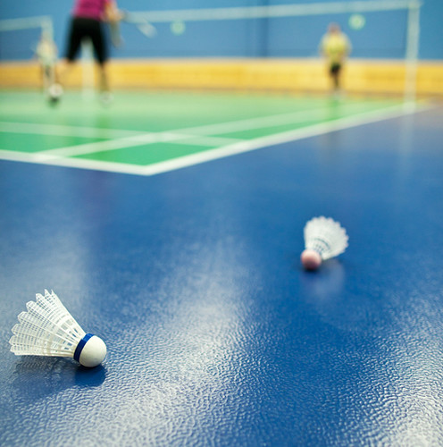 Koydol Resilient Athletic Flooring: Options Collection