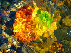 Water Art: Autumn colours (peggyhr) Tags: pink blue friends orange brown white canada green water sunshine yellow reflections river grey gallery niceshot bc stones clear mauve blogged soe fraserriver musictomyeyes quesnel cubism autumnleaf thegalaxy fineartphotos peggyhr flickrbronzeaward heartawards peaceawards thebestshot beautifulshot afeastformyeyes vanagrammofontheoldgramophone thedigitographer 100commentgroup colourpriority flickraward tufotoesarte artnetcontemporaryartist mygearandme ringexcellence avpa1maingroup blinkagainforinterestingimages redgroupno1 vivalavidalevel1 musictomyeyeslevel1 p1040399bp aidarehgroupllenaelhiloconimgenesprimaverales yourbestmostseenphotos