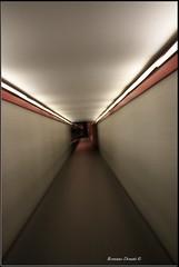 Tunnel (Rossano D.) Tags: italy italia perugia rocca umbria paolina