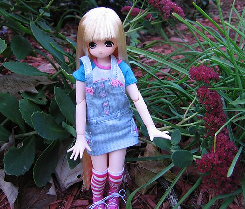 Emalie and the Sedum. by Leenechan