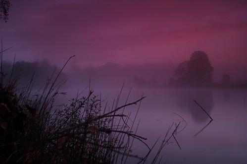 Misty Dawning