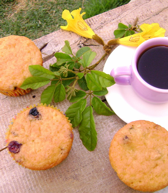 muffin de blueberry e cranberry