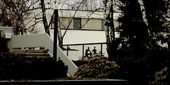 gwb   privacy (stoha) Tags: berlin germany deutschland haus architect stephan allemagne gwb soh charlottenburg architekt berlino berlincharlottenburg erichmendelsohn guessedberlin 30erjahre stoha neuesachlichkeit amrupenhorn gwbbergfels