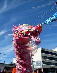 Dancing Dragon (Georgie_grrl) Tags: sky toronto ontario clouds beard movement downtown chinatown dragon dancing celebration rawr cultural moonfestival chinatownfestival christmasprezzie cans2s mydarkpinkside samsungd760 pinkaday my365idea cuzilikepink anditspinktoo thankyoumondo spadinaavenueanddundasstreetwest