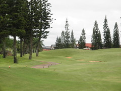 WAIKELE COUNTRY CLUB 142