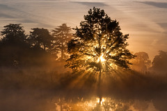 September Sun (Kevin Day) Tags: mist lake reflection misty sunrise dawn rays slough berkshire kevday sunbeams langleypark