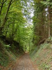 Die letzten Kilometer bis Bad Hönningen