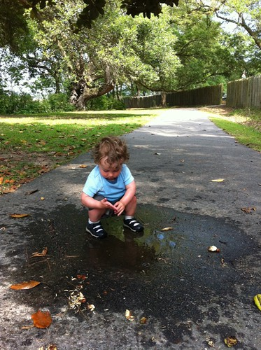Puddle by Jemima's Photos
