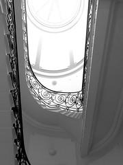 Argentine Ambassador's Residence (SONICA Photography) Tags: england london argentina westminster photo foto fotograf photos photographic photographs photograph fotos londres gb lin openhouse londra londonopenhouse opendoors sw1 londinium belgravesquare photograf ohl londonist fotograaf londonengland photographes 2011 moderncity opencity royaumeuni accessallareas grandebretagne openhouselondon londonphotos thisislondon thomascubbitt argentinatravel photographen belgravevilla maisonouverte grosvenorcrescent eztd eztdphotography photograaf 17thseptember2011 argentinesambassadorsresidence cubbitt fotoseztd eztdphotos villedelondres openhousers hauptstadtgrossbritannien leeztd dereztd eztdgroup no1photosoflondon londonimagenetwork ceztd