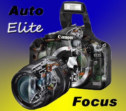Level 7 Auto Focus