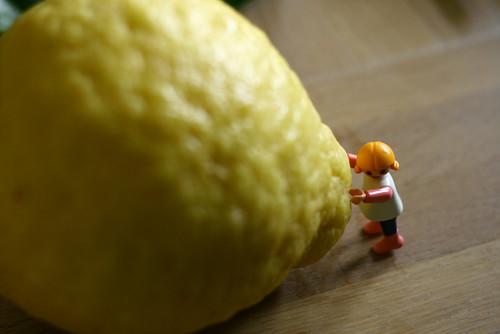 citroen7