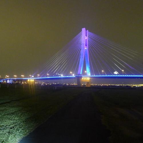 新北大橋夜景