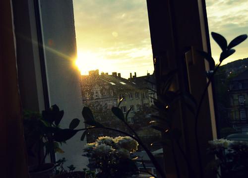 Ein Blick aus dem dreckigen Fenster :D