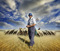 The Shepherd's Call (Ben Heine) Tags: sky cloud sun man detail art nature field hat animal animals composition warning fur landscape photography 1 countryside stand spain model scenery funny colorful poem silent emotion cloudy shepherd farm tail faith religion group dream champs peaceful calm christian together silence simplicity santiagodecompostela photoediting leader farmer guide wisdom quite paysage dramaticsky campagne herd sheeps mouton caminodesantiago fourrure berger radialblur christianism postprocessing sagesse 2011 photoretouching fermier troupeau wayofstjames honne petersquinn benheine socialportrait samsungimaging truthandillusion theshepherdscall