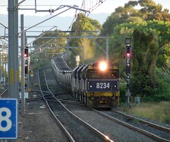 diverted coal (sth475) Tags: railroad autumn train clyde gm diesel railway loco australia grade nsw locomotive coal fc freight pn steep wollongong illawarra emd unanderra 8234 82class dlclass jt42c at42c