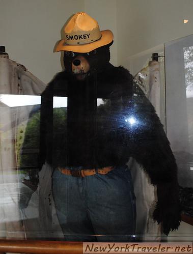 59 Smoky the Bear Suit