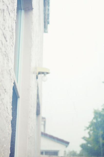 hazy rainy dream