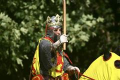Bannockburn 2005 2005 (19 of 61) (Photography by Duncan Holmes) Tags: battle medieval sword knight pike cavalry falconry bannockburn manatarms pikemen polearm menatarms