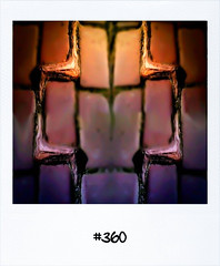 "#Dailypolaroid of 22-9-11 #360 #fb • <a style=""font-size:0.8em;"" href=""http://www.flickr.com/photos/47939785@N05/6182069593/"" target=""_blank"">View on Flickr</a>"