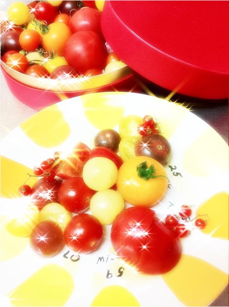 セレブデトマトでリッチ気分♪