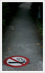 No smoking (Morris Chiang) Tags: digital 50mm voigtlander f11 nokton m82