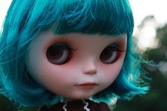 AdaD 269/365 - Meet Finnius
