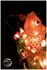 floating giant lantern