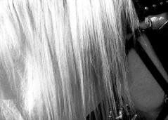 Long Flowing Hair (DavidJNoel) Tags: horses blackandwhite horse closeup hair equines