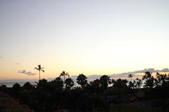 110924_1833_IMG_7976 (Shinji Ueda) Tags: hawaii all trumpinternationalhotel summervacation2011