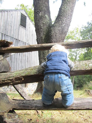 see rails, must climb