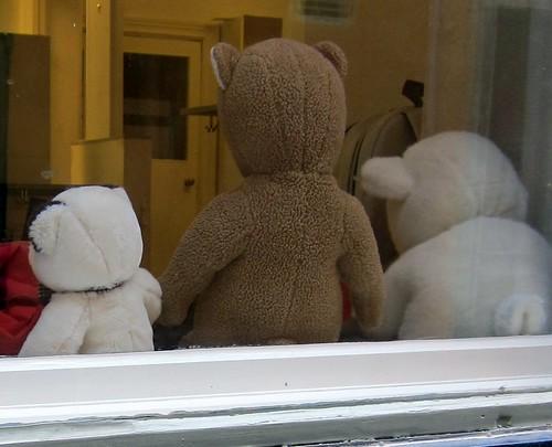 Teddykarhujen selät by Anna Amnell