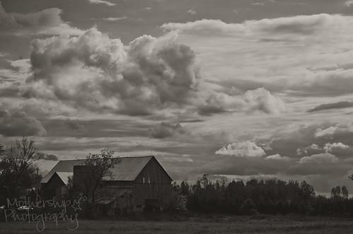 292:365 Big sky on the farm