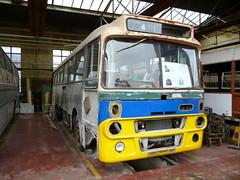 Ford R1114 Alexander Y-Type CST 703N (miledorcha) Tags: bus ford museum coach glasgow highland alexander coaches sbg preservation psv pcv hol bridgeton t93 omnibuses gvvt highlandomnibuses ytype r1114 cst703n