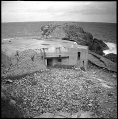 Bibette Head resistance nest 2