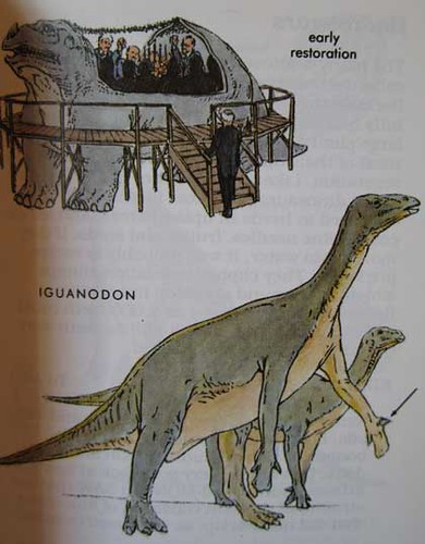 Peterson First Guides: Dinosaurs p. 73