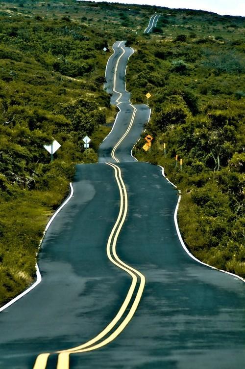 beautiful road_005