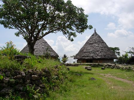 Traditional-house_in_Ruteng