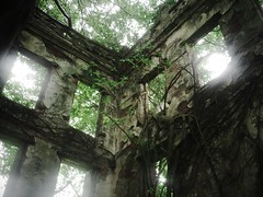 Taiwanese Haunted House II (weizor) Tags: trees windows green abandoned nature wet rain architecture lumix asia taiwan panasonic derelict chiayi vignette jiayi tw hauntedhouse overrun micro43 microfourthirds 20mmf17asph dmcg3