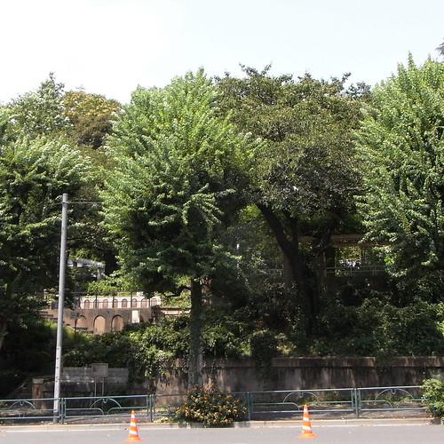 Motomachi_Park_1